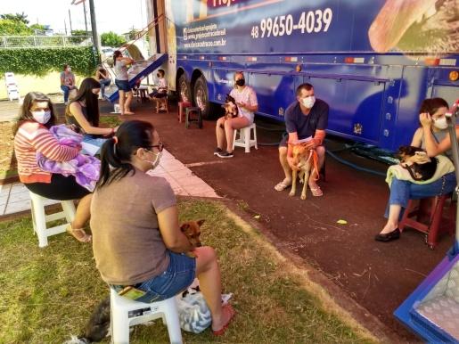 ONG Cedro Animal realiza a primeira castração do ano