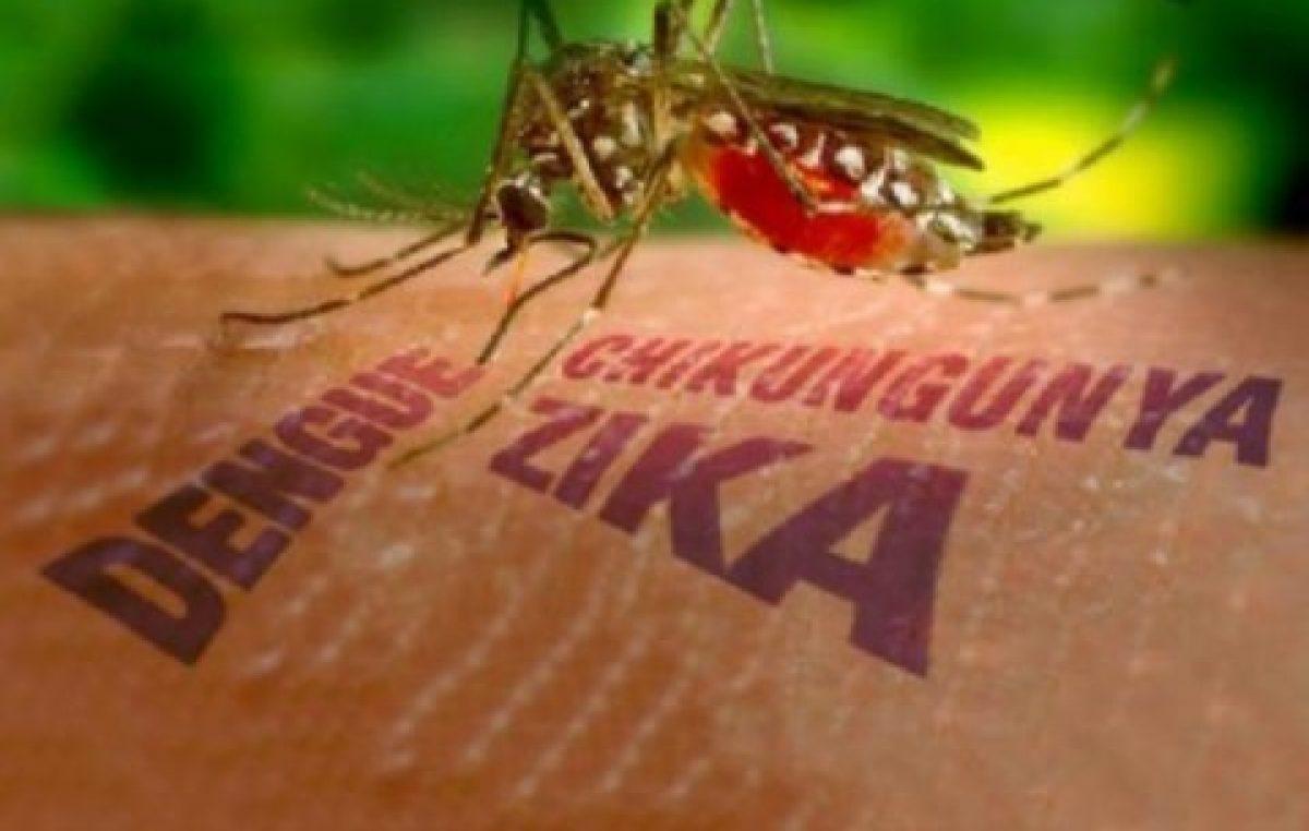 DIVE confirma primeiro caso autóctone de febre de chikungunya em SC